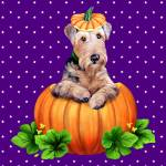 """Airedale Terrier Halloween Dale-O-Lantern"" by danesrus"