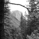 """El Capitan.Yosemite"" by KevArchie"