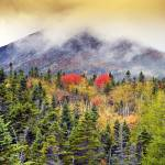 """Baxter State Park, Maine  by Brendan Reals"" by BrendanReals"