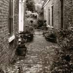 """""""Charleston Alley"""" by jasonhensley"""