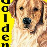 """Yellow Pop Pup Golden Retriever"" by KathleenSepulveda"