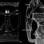 """Anatomy I"" by JeanetteAbrahamsen"