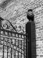 New Orleans Pineapple Gate Black and White