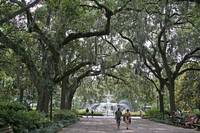 Stroll in Savannah