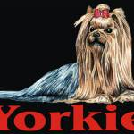 """Black Pop Pup Yorkshire Terrier"" by KathleenSepulveda"