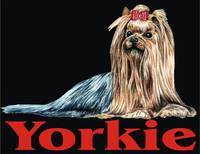 Black Pop Pup Yorkshire Terrier