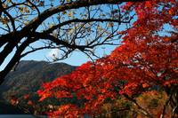 Autumn of Nikko
