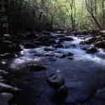 """little River"" by RichardBaumer"