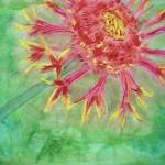 """""""Passion Flower"""" by magnoliadorn"""