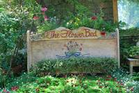 The Flower Bed...A Place To Dream