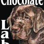 """Black Pop Pup Chocolate Labrador Retriever"" by KathleenSepulveda"