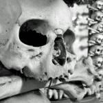 """""""Sedlec Ossuary Skull"""" by gudenius"""