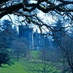 """Balloch Castle"" by colhou60"