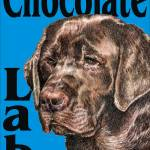 """Blue Pop Pup Chocolate Lab Retriever"" by KathleenSepulveda"