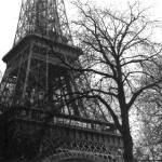 """Eiffel Tower"" by CrystalCarey"