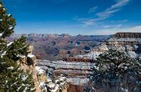 Snowy Grand Canyon Arizona 2864