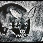 """A for Aardvark"" by dejong"