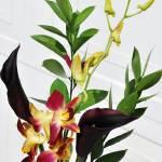 """Ikebana detail"" by starrtwin1"