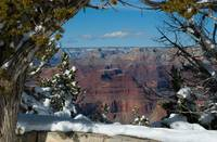 Window Into Grand Canyon 3019