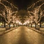 """december lights"" by richietown"