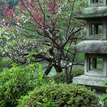 """Japanese Garden in Kyoto, Japan"" by canbalci"