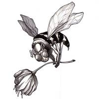 Dragger Bee