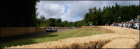 Mercedes LeMans - Goodwood Festival Of Speed