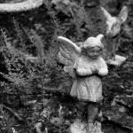 """""""Weeping Angel"""" by SirenDesigns"""