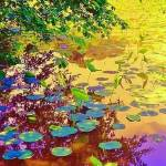 """""""Monet"""