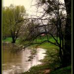 """""""Danube (Moson)-2"""" by sz"""