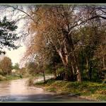 """""""Danube (Moson)-03"""" by sz"""