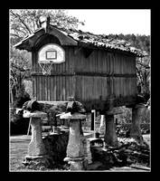 Horreo basket ~ Country basket