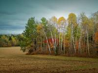 Maine_FarmLand_91