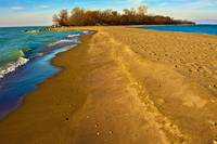 Point Pelee Tip