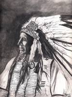 Native American Indian,Chief American Horse