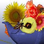 """Teapot with Flowers, Spider, & Butterfly"" by margo"