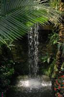 Exotic Waterfall