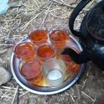 """""""هفت فنجان چای داغ"""" by PAHLAVAN"""