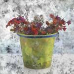 """""""flower 1"""" by rolf-hellmeier"""