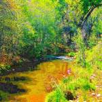 """Steaming Sedona River"" by karla"