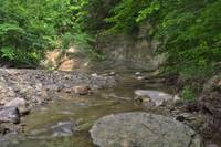 Clifty Creek #7