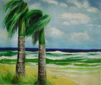 Palm trees in the winds