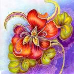 """Paisley Nasturtium"" by AlmaLee"