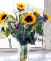 Sunflower Arrangement in Bright Window