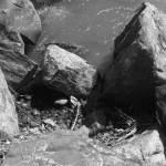 """Cathren Creek B/w (rocks)"" by alexrice"