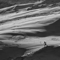 maitlands dune runner Art Prints & Posters by paul john wright