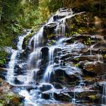 """Sylvia Falls - (Wentworth Falls) Blue Mountains NS"" by jasonpang88"