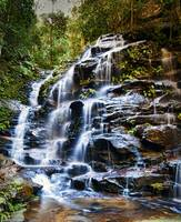 Sylvia Falls - (Wentworth Falls) Blue Mountains NS