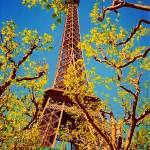"""Paris in Spring"" by winrow"