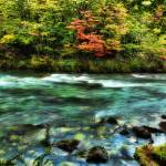 """The River Passed the Quivering Forest in the Autum"" by stuckincustoms"